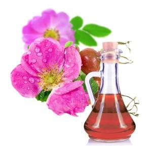 azeite-oleo-rosa-mosqueta-onde-comprar